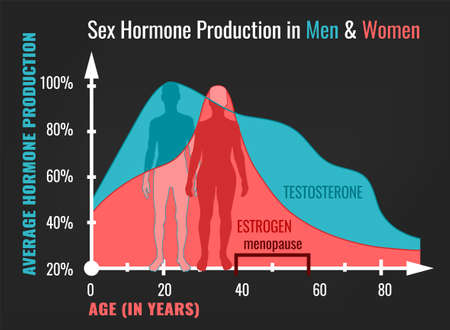 Sex hormone production in men and women. Average percentage from the birth to the age of eighty years. Beautiful vector illustration. Medical infographic useful for an educational poster graphic design.
