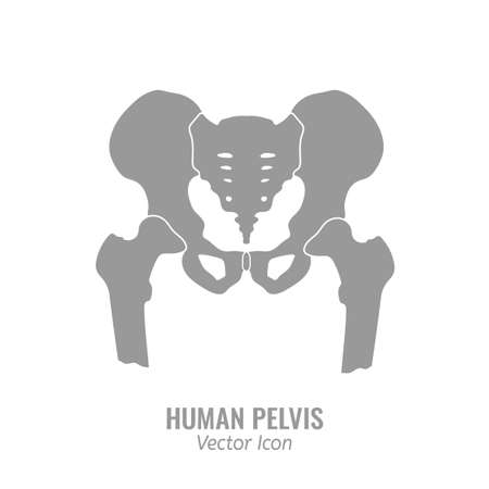 Human male anatomy icon. Pelvis image in a flat style. Vector illustration in grey colour isolated on a white background.