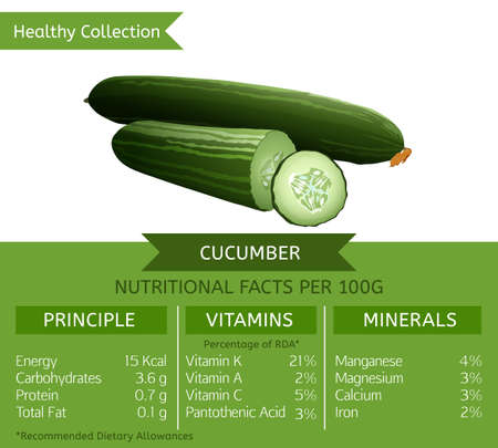 Cucumber health benefits. Vector illustration with useful nutritional facts. Essential vitamins and minerals in healthy food. Medical, healthcare and dietory concept. Ilustração