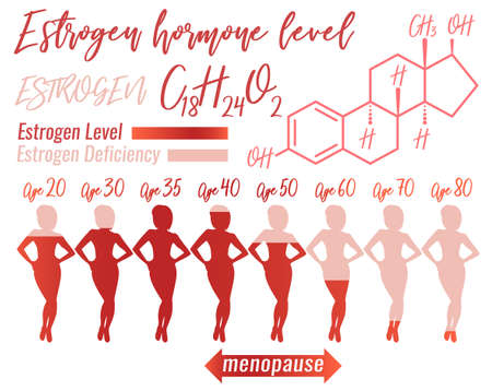 Estrogen hormone level infographic. Beautiful medical vector illustration with estrogen molecular formula in pink colours.