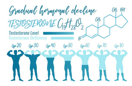 Testosterone Hormone Level. Beautiful medical vector illustration with molecular formula in blue colours. Foto de archivo - 97276408