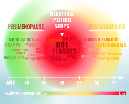 Stages and symptoms of menopause. Estrogen level average percentage from the birth to the age of 65 years. Vector illustration. Medical infographic useful for an educational poster graphic design. 일러스트
