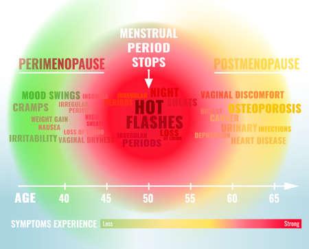 Stadien und Symptome der Wechseljahre. Durchschnittlicher Prozentsatz des Östrogenspiegels von der Geburt bis zum Alter von 65 Jahren. Vektor-illustration Medizinisches infographic nützlich für ein pädagogisches Plakatgrafikdesign. Vektorgrafik