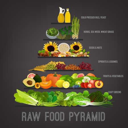 Raw food pyramid concept. Fruits, vegetables, beans, oils and other products in order of their importance. Components of recommended ration. Editable vector illustration on a dark grey background