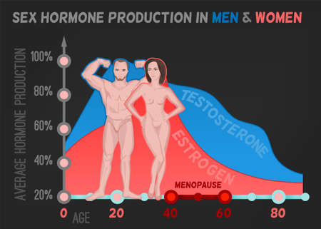 Sex hormone production in men and women. Average percentage from the birth to the age of eighty years. Beautiful vector illustration. Medical infographic useful for an educational poster design. Иллюстрация
