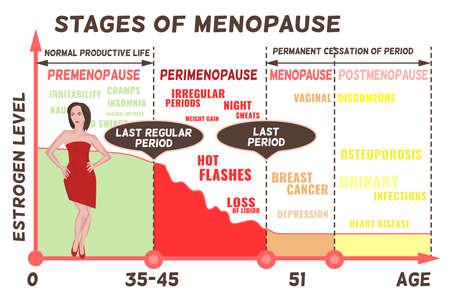 Etapas y síntomas de la menopausia. Porcentaje medio del nivel de estrógeno desde el nacimiento hasta los ochenta años. Infografía médica útil para el diseño gráfico de un cartel educativo. Ilustración de vector.
