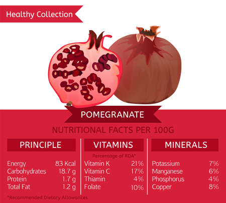 The pomegranate health benefits. Vector illustration with useful nutritional facts.