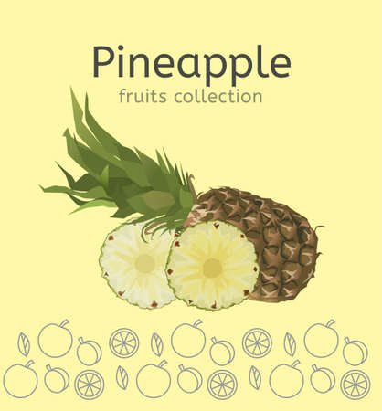 Whole pineapple with round slices isolated on a light beige background. Editable vector illustration.
