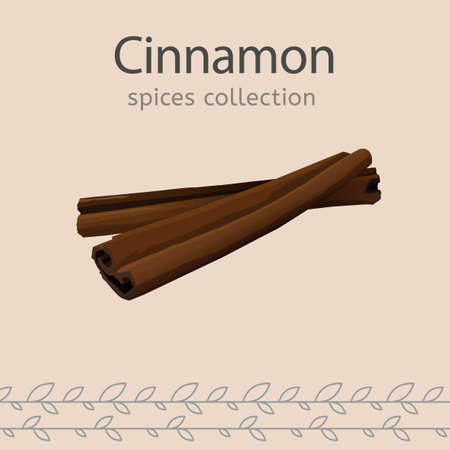 Cinnamon image isolated on a light beige background. Spices collection. Vector illustration. Illustration