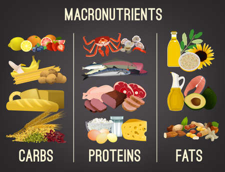 Main food groups - macronutrients. Carbohydrates, fats and proteins in comparison. Dieting, healthcare and eutrophy concept. Vector illustration isolated on a dark grey background. Landscape poster.