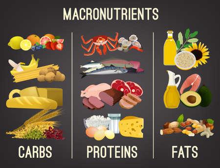 Principales grupos de alimentos: macronutrientes. Comparación de carbohidratos, grasas y proteínas. Concepto de dieta, salud y eutrofia. Ilustración de vector aislado sobre fondo gris oscuro. Cartel de paisaje. Ilustración de vector