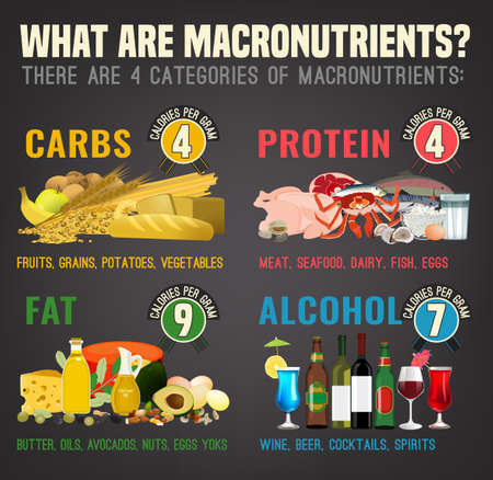 Main food groups - macronutrients. Carbohydrates, fats and proteins in comparison. Illustration