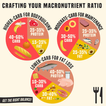 Crafting your macronutrient ratio. Fat loss, bodybuilding and health maintenance diets diagrams. Colourful vector illustration isolated on a light beige background. Healthy eating concept. Иллюстрация