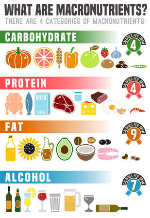 What are macronutrients. Carbohydrates, fats and proteins in comparison. Dieting, healthcare and eutrophy concept. Vector illustration isolated on a white background.Vertical poster.