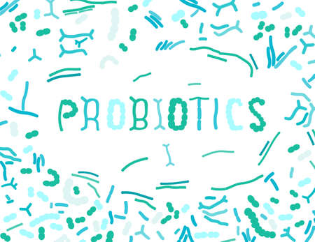 Probiotics and prebiotics. Normal gram-positive anaerobic microflora. Editable vector illustration in green and blue colors isolated on white background. Medical, healthcare and scientific concept.