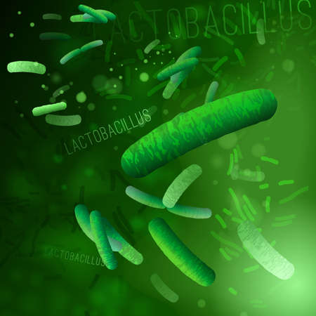 Probiotics and prebiotics. Normal gram-positive anaerobic microflora background. Editable vector illustration in bright green colors in realistic style. Medical, healthcare and scientific concept.