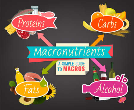 Main food groups - macronutrients. Carbohydrates, fats, proteins, alcohol. Dieting, healthcare and eutrophy concept. Vector illustration isolated on a dark grey background. Landscape poster.