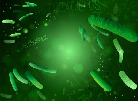 Probiotica en prebiotica. Normale gram-positieve anaërobe microflora achtergrond. Bewerkbare vectorillustratie in heldere groene kleuren in realistische stijl. Medisch, gezondheidszorg en wetenschappelijk concept. Vector Illustratie