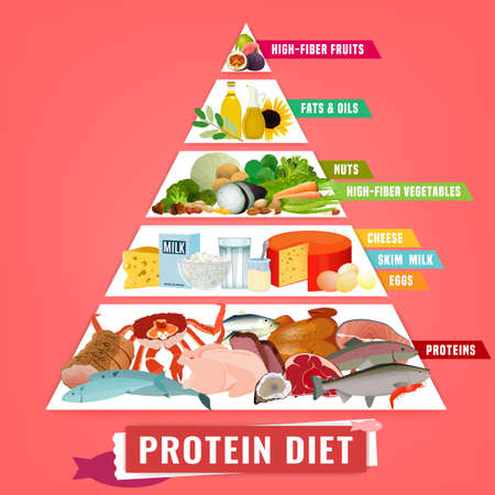 High protein diet vertical poster. Colourful vector illustration with different food types isolated on a light pink background. Healthy eating concept. Useful infographic Ilustração