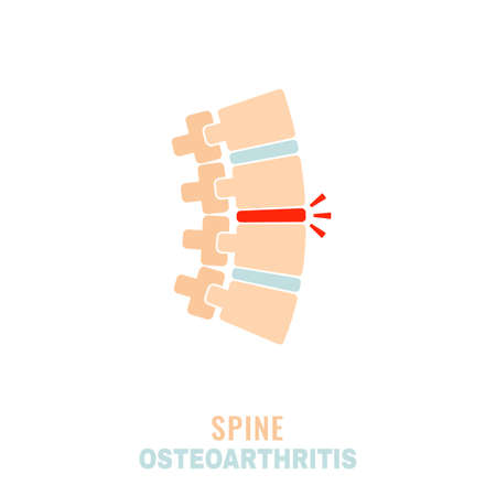 Spine osteoarthritis icon