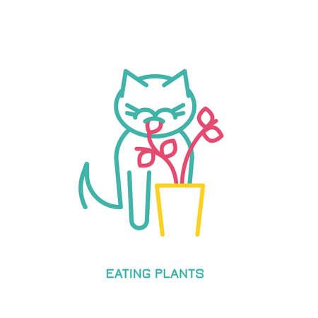 Cat Behavior Icons Illusztráció