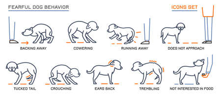 Dog Behavior Icons Set 向量圖像