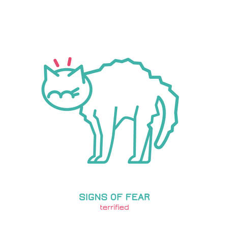 Cat fearful behavior signal. Domestic animal or pet body language. Fear and anxiety. I am scared. Kitty reaction. Simple icon, symbol, sign. Editable vector illustration isolated on white background    Иллюстрация