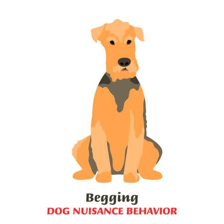 Dog Behavior Problems Icon