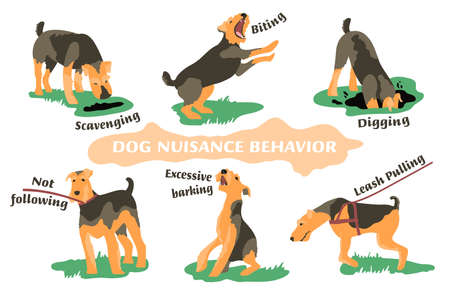 Dog behavior problem icon set