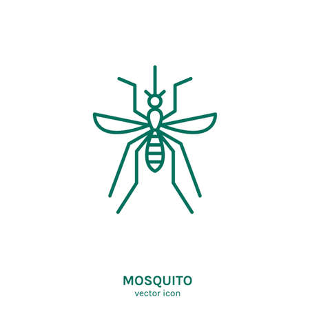 Insect vector icon 向量圖像
