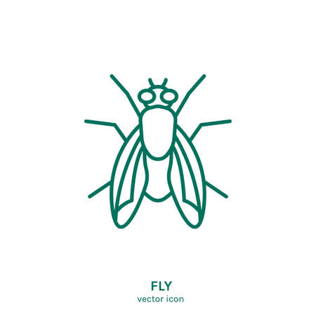 Insect vector icon