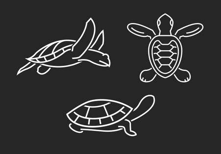 Turtle elements set. Outlined graphics isolated on a dark background
