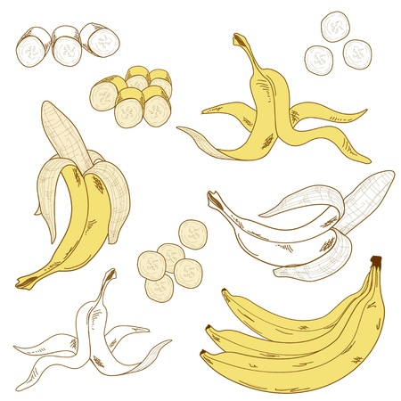 banana skin: Set of colored and hand drawn bananas on the white background  Isolated icon  Illustration