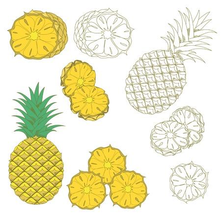 pineapples: Conjunto de pi�as procedentes de colores y la mano en el fondo blanco. Icono aislado.