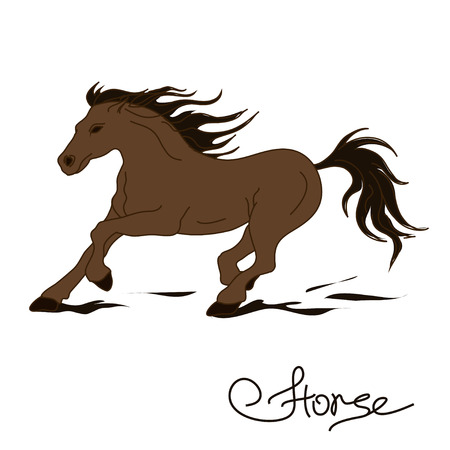 mane: Illustration of isolated racing horse