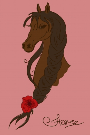 Illustration with heard of beautiful horse with braided mane Vector