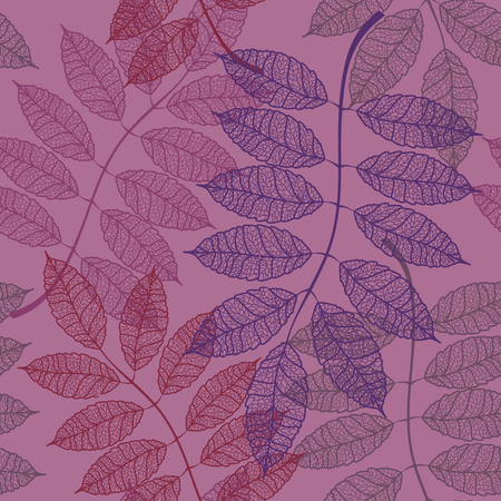 Seamless pattern of outline autumn rowan leaves Vector