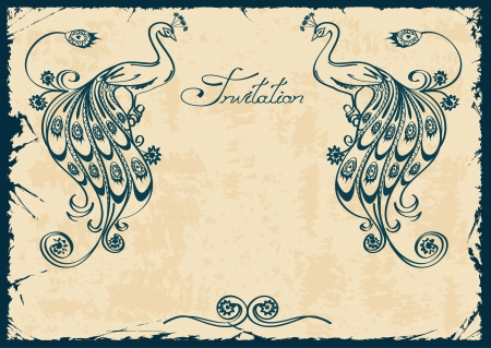 exotic: Invitaci�n de la vendimia o de la tarjeta con el azul de pavo real contorno Vectores