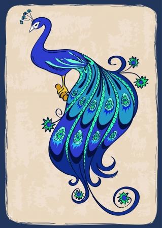 pluma de pavo real: Ilustración con el pavo real azul ornamental estilizado Vectores