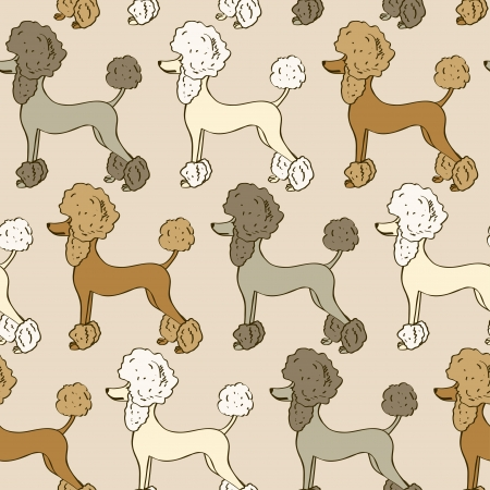 groomed: Seamless pattern of funny cartoon poodle dogs Illustration