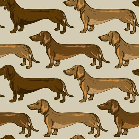 Seamless pattern of beige brown Dachshund dogs