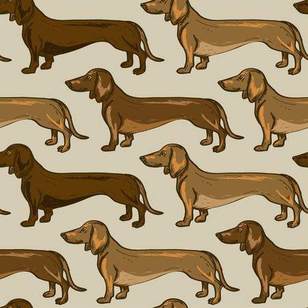 Seamless pattern of beige brown Dachshund dogs