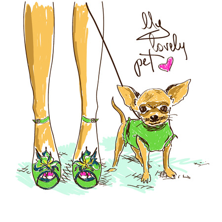 Illustration with legs of girl in fashion shoes and little cute chihuahua Vector