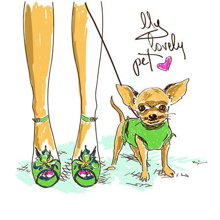 cane chihuahua: Illustrazione con gambe della ragazza in scarpe di moda e piccolo chihuahua carino Vettoriali