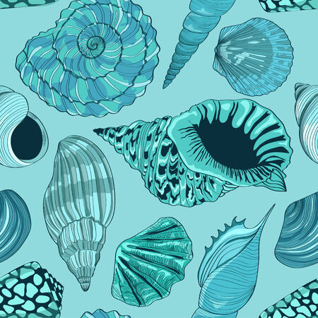 cockle: Seamless pattern of hand drawn seashells