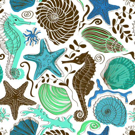 clam illustration: Seamless pattern of colorful hand drawn seashells, starfish and seahorse