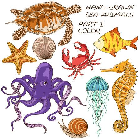다채로운 바다 동물을 그린 격리 된 손 세트