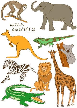 australian ethnicity: Sketch set of isolated African and Australian wild animals