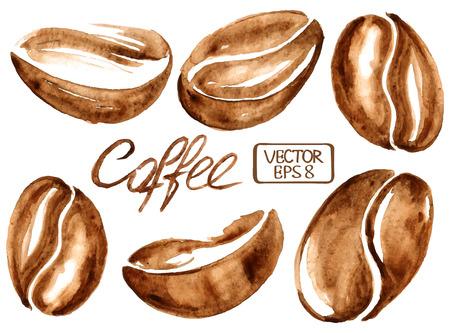 tarde de cafe: Vector aislado granos de café acuarela iconos Vectores