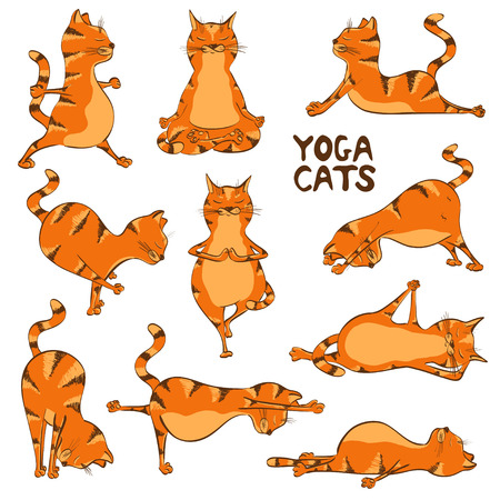 Set of isolated cartoon funny red cats icons doing yoga position